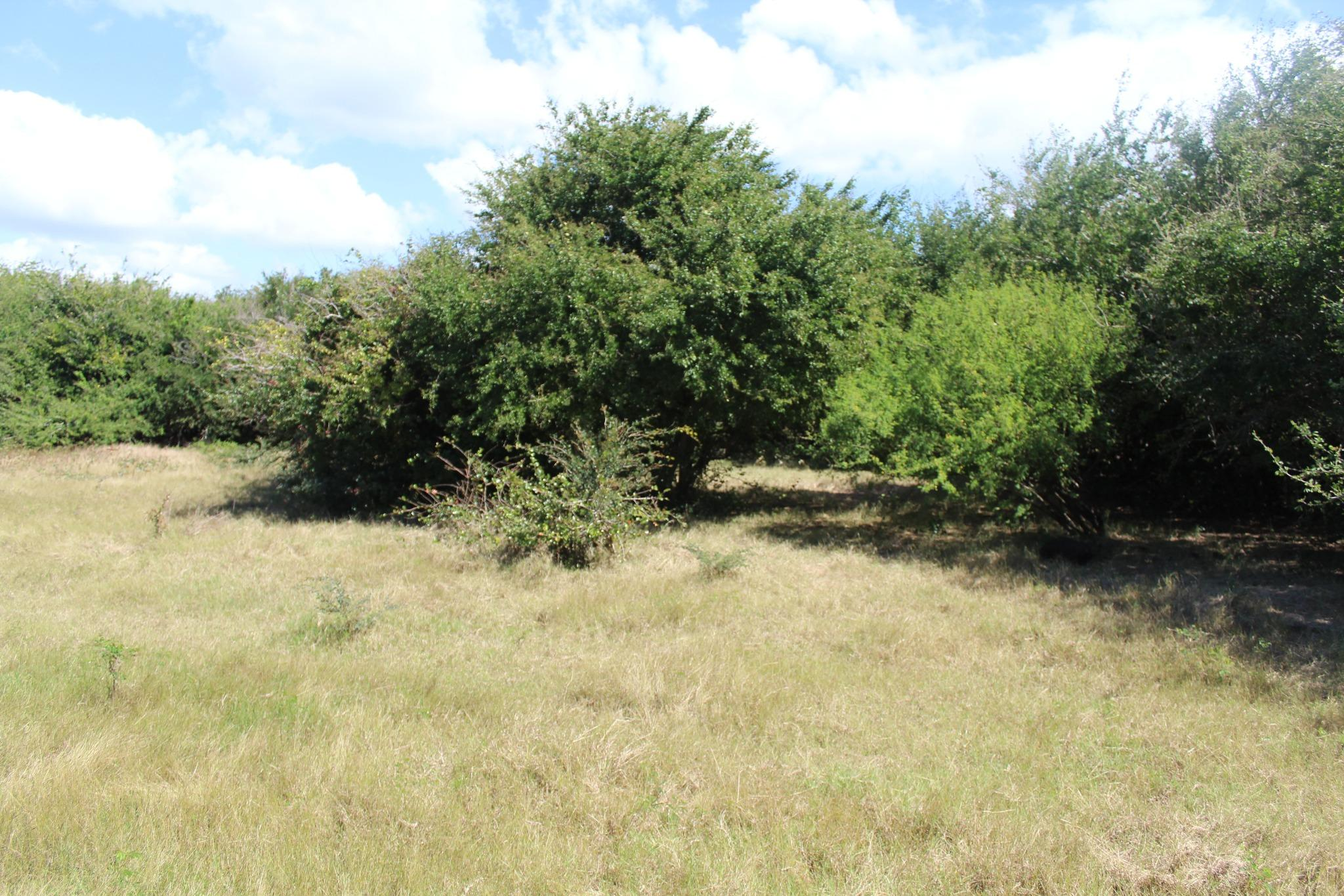 FOR SALE – Wonderful freehold land of 1 acre 33 near the beach of Bain Boeuf