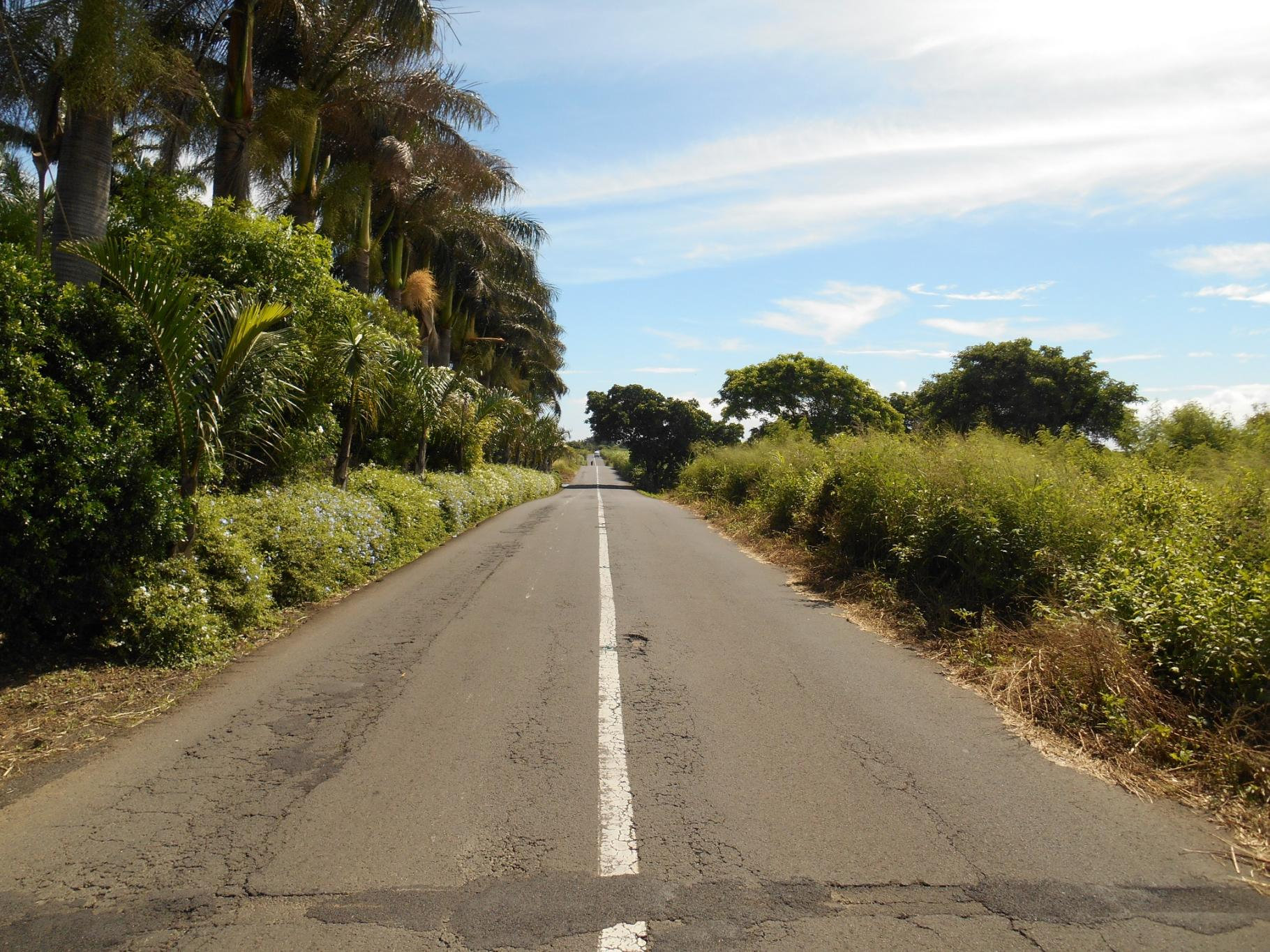 For sale – Beautiful agricultural land of 5 acres 52 located on the main road of St François.