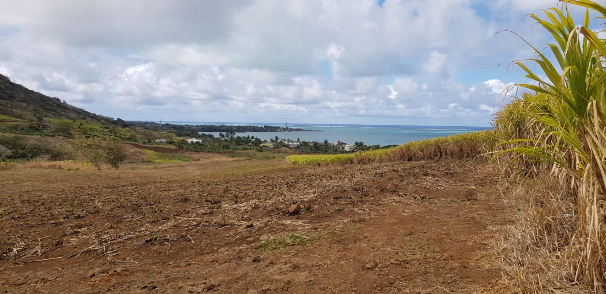 FOR SALE – Wonderful agricultural land of 6 acres 44 with sea view at Quatre Soeurs