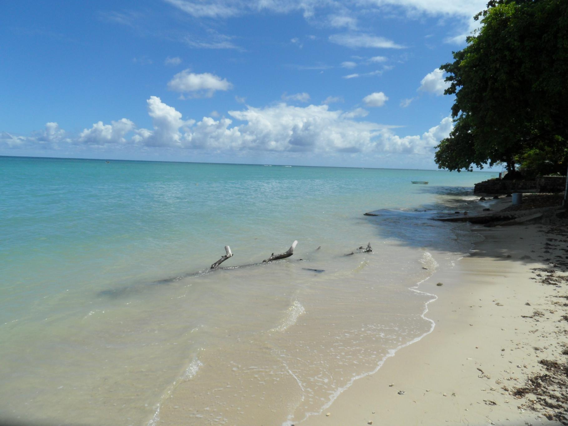 FOR SALE – Freehold beachfront land of 381 toises in Baie du Tombeau.