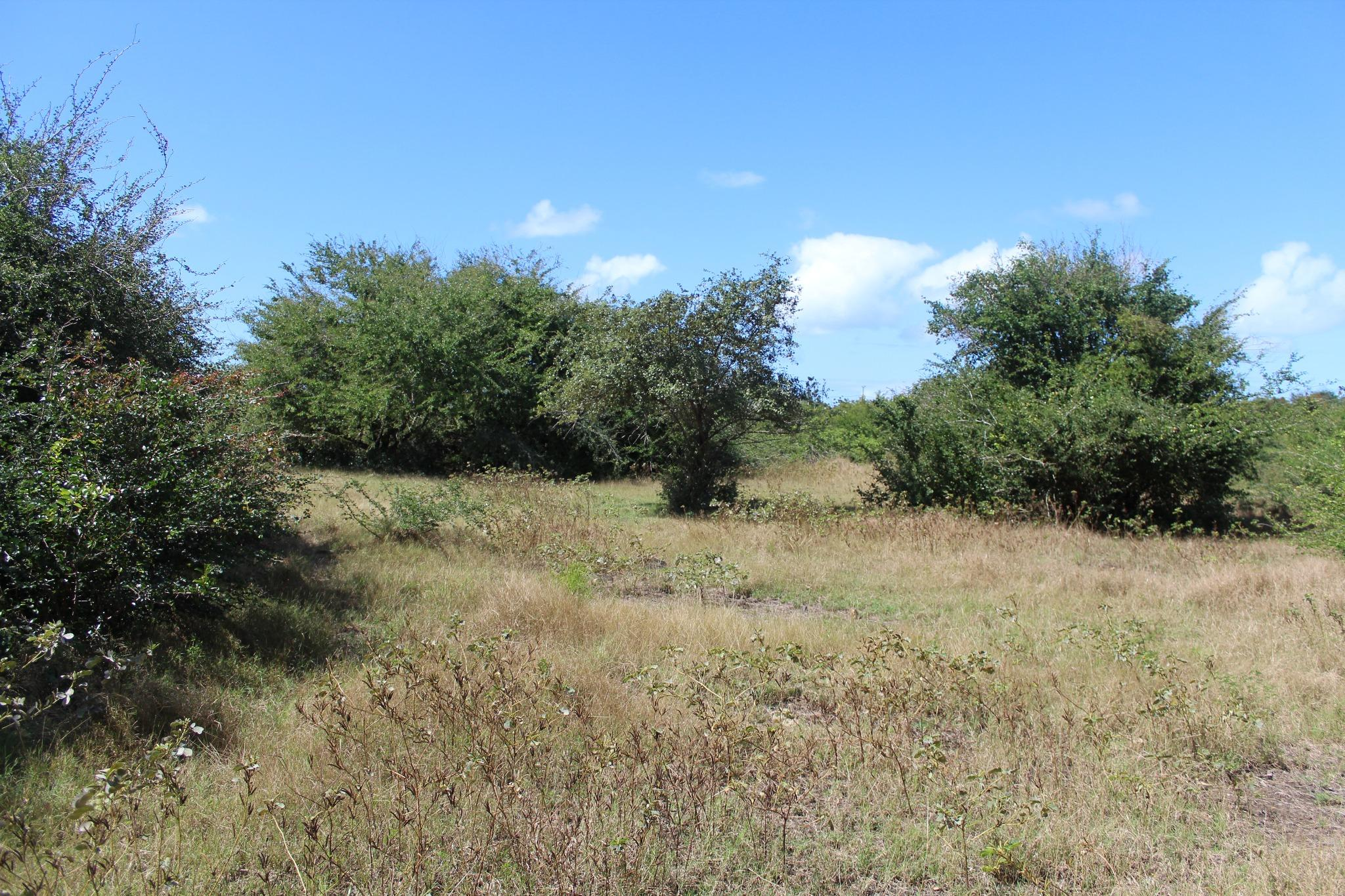 FOR SALE – Wonderful freehold land of 1 acre 12 near the beach of Bain Boeuf