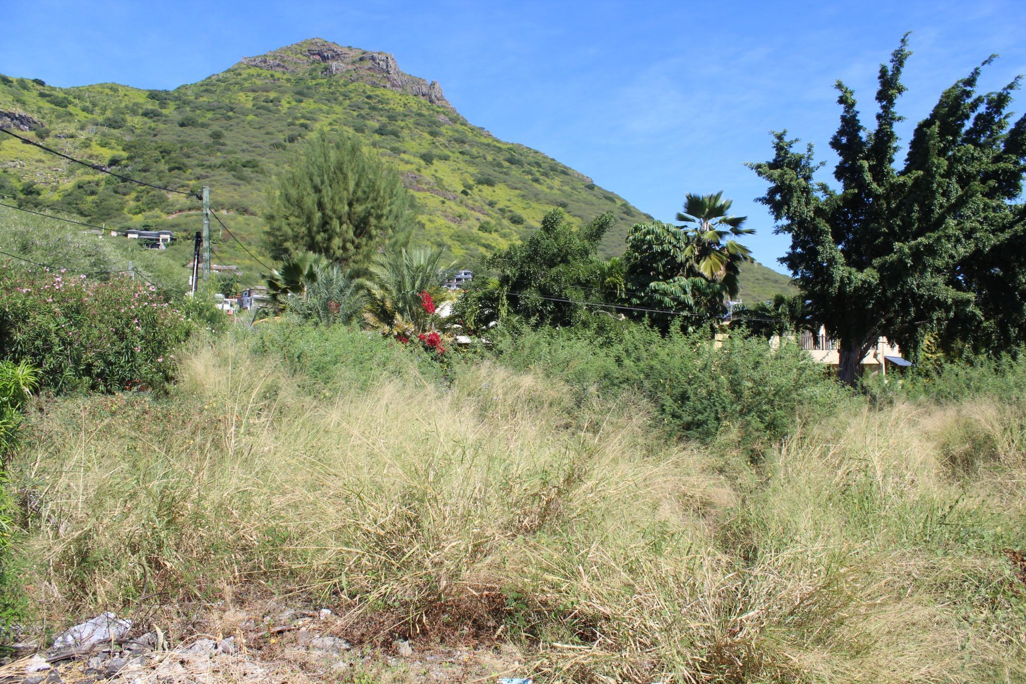 A VENDRE – Terrain de 256 toises à Black Rock à Tamarin