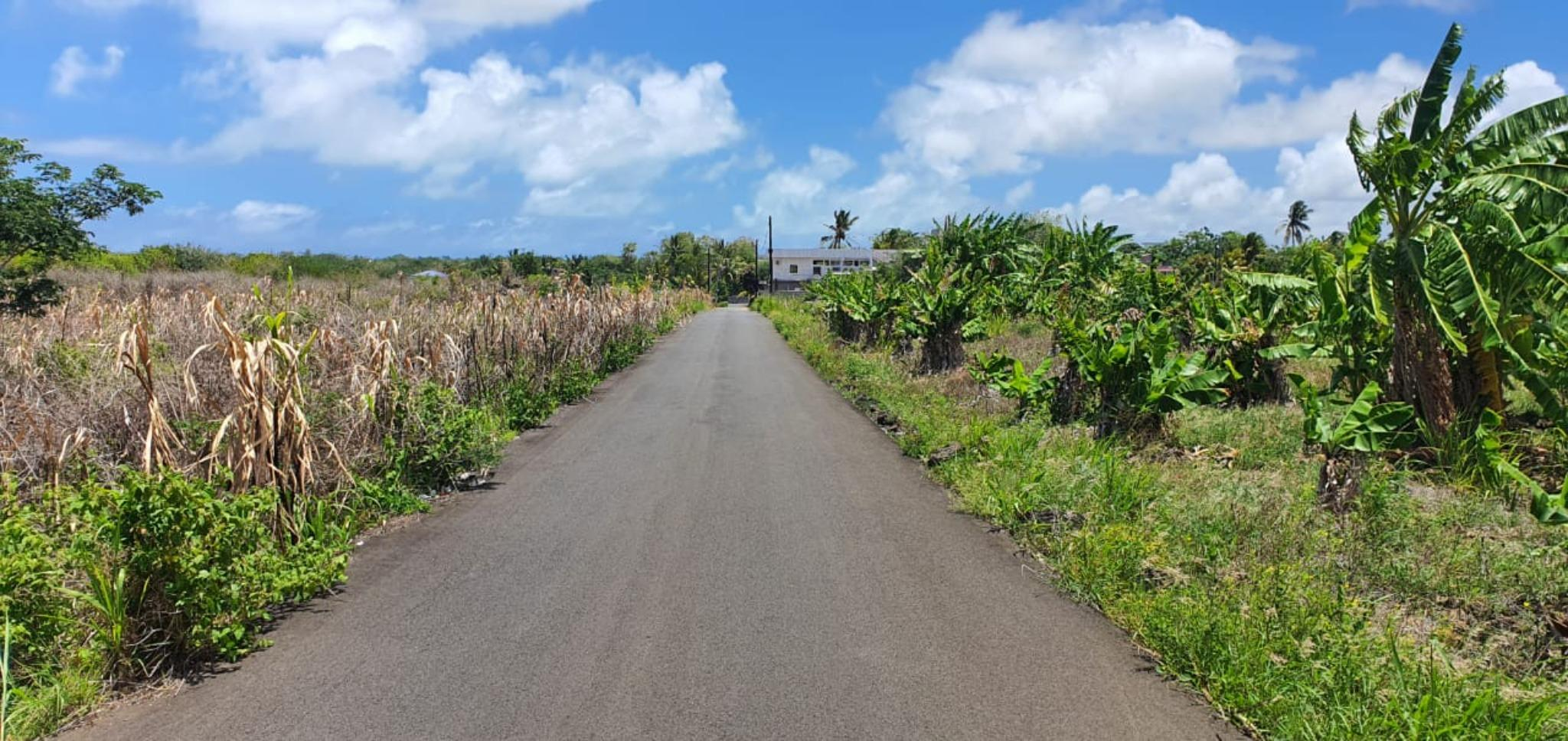 For sale – Magnificent agricultural land of 1 acre 19 is located in Petit Raffray.