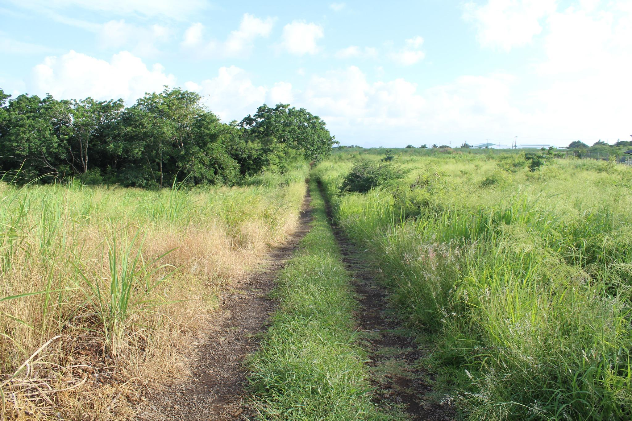FOR SALE – Freehold residential land of 1 acre 13 ideally situated in Mont Mascal