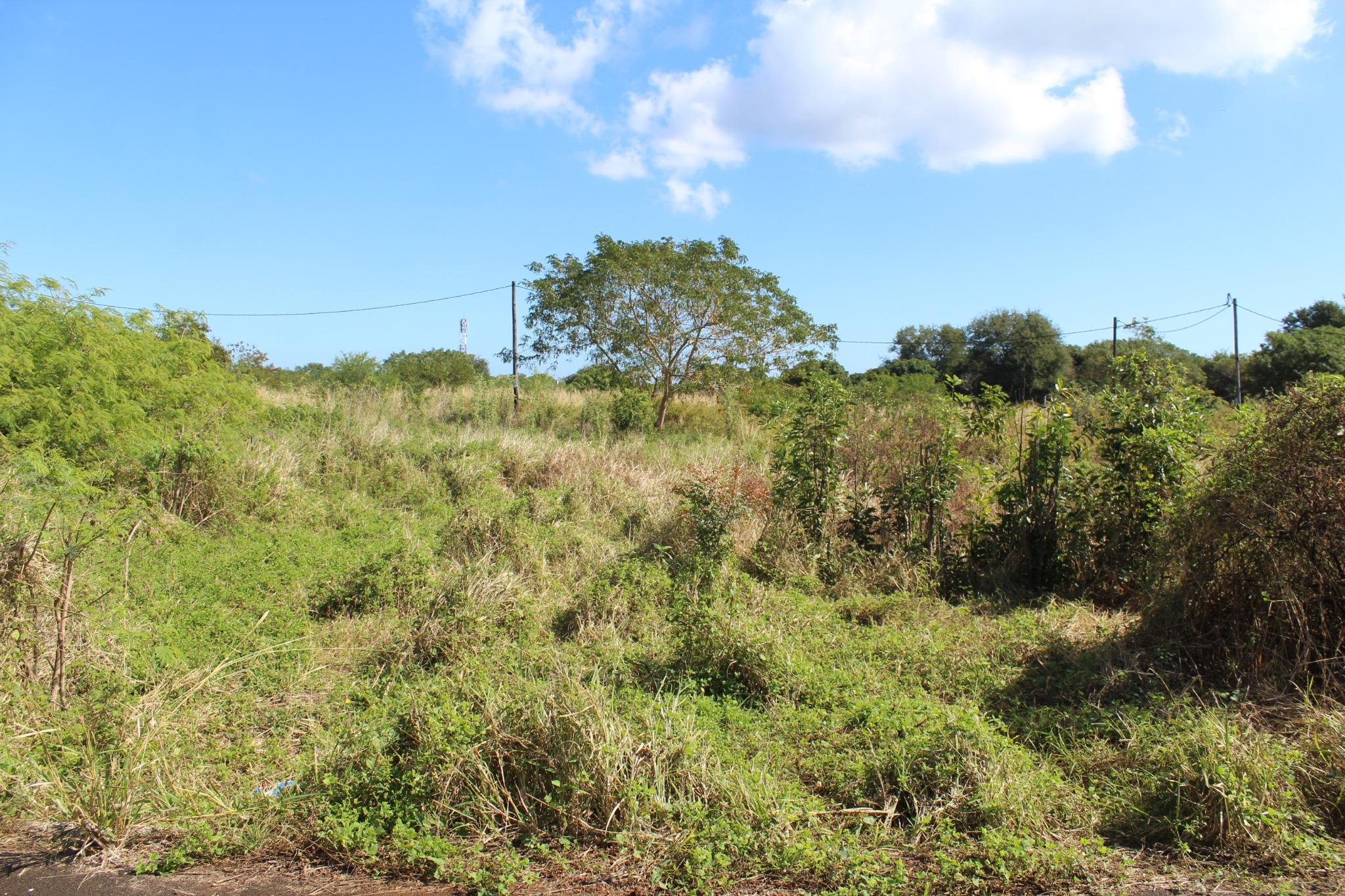FOR SALE – Beautiful land of 80 toises in a residential area in Pointe aux Piments