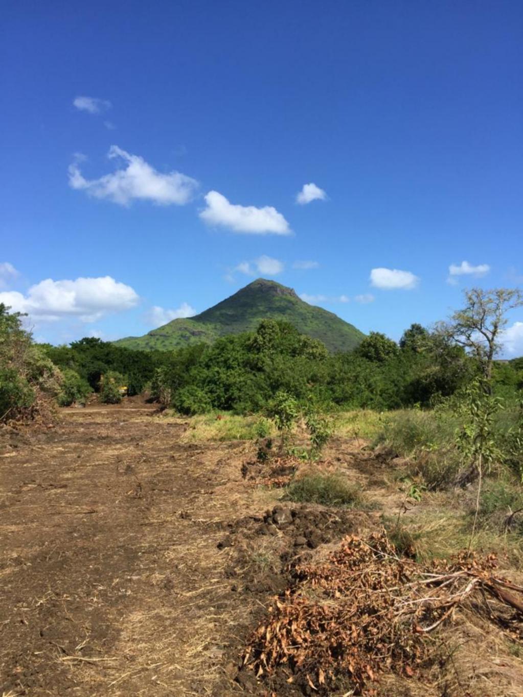 A vendre – Magnifique terrain à bail de 99 ans de 454 toises, situé dans le lotissement Bois d'Olive Forestia à Tamarin