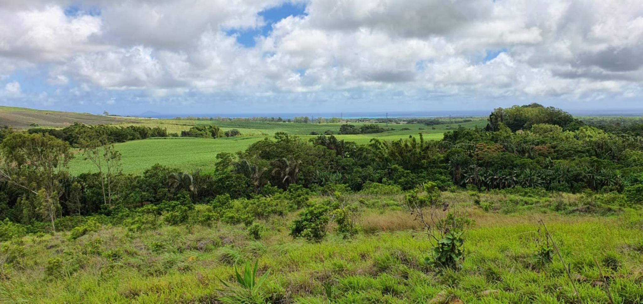 A vendre – Terrain agricole de 37 arpents 50 se situe dans un environnement verdoyant dans les hauteurs de La Nicolière.