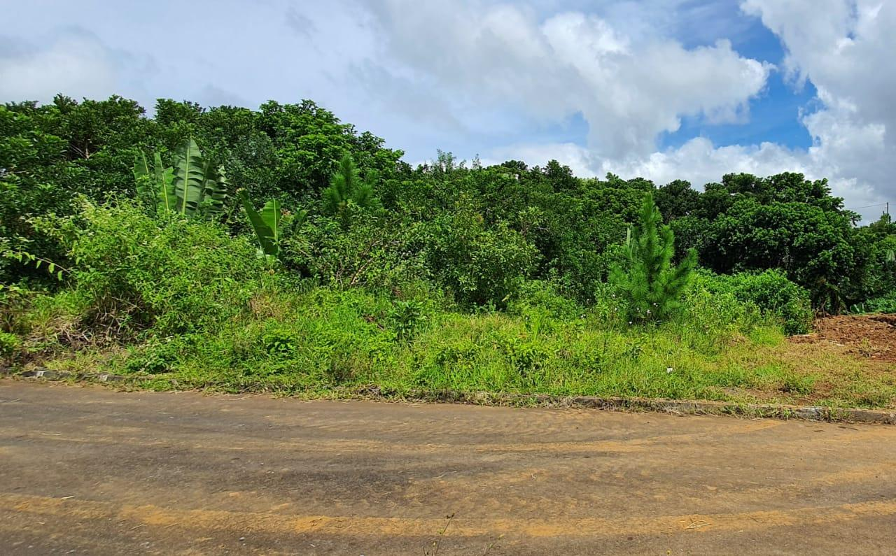 FOR SALE – Beautiful residential land of 100 toises is located in the morcellement of Pinewood Garden in Wooton.